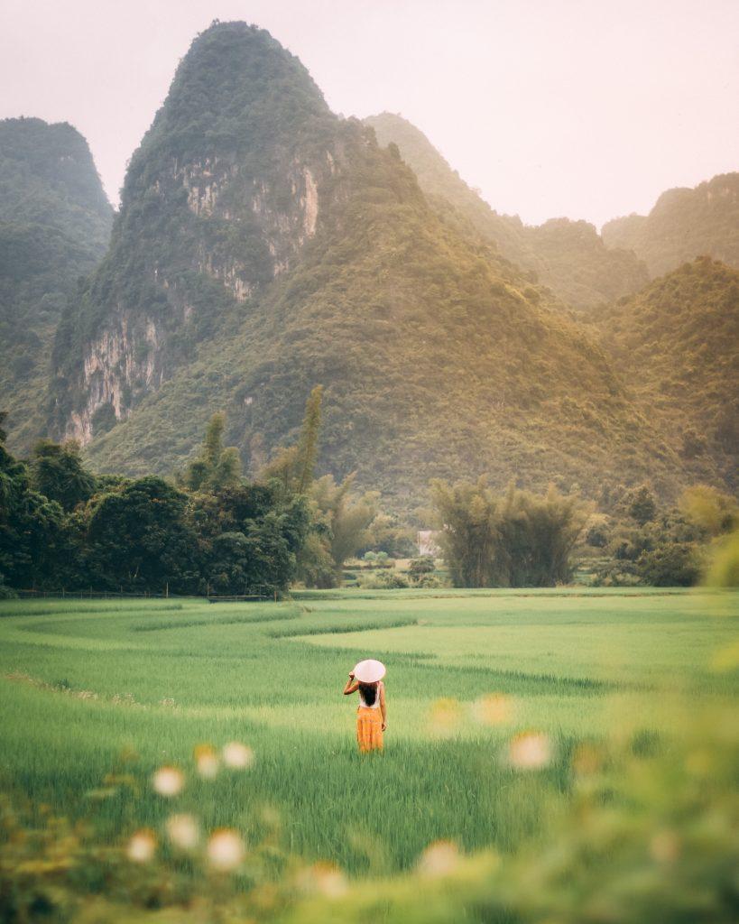 Person standing on green grass field. (image courtesy of taryn elliott)