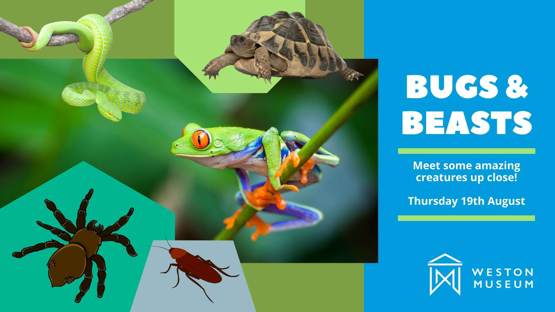 bugs and beasts poster with images of insects and animals and text on the right hand side